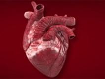 """Tiến sĩ tim mạch Mỹ cảnh báo những thói quen rất nhiều người mắc """"tàn phá"""" trái tim"""
