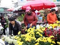 Hà Nội: Ngày mùng 1 âm lịch cuối cùng trong năm, hoa tươi đắt hàng
