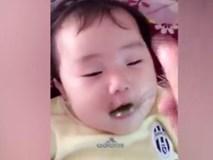 Đang ăn lăn ra ngủ