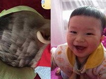 Những quả đầu ruộng bậc thang do mẹ tự tay cắt tóc cho con diện Tết khiến ai nấy không thể nhịn cười