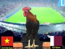 Chú gà dự đoán trận đấu giữa Việt Nam với Qatar