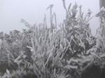 Mù Cang Chải lung linh sắc màu ruộng bậc thang mùa nước đổ-1