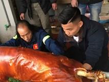 Văn Thanh phụ cha mổ lợn quay đãi họ hàng ngày cuối năm