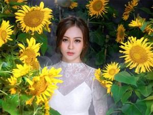 Hoa khôi Nam Bộ gợi cảm với đầm xuyên thấu bên hoa hướng dương