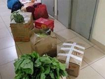"""Trở về thành phố sau Tết, dân mạng Việt hớn hở khoe """"núi thực phẩm"""" được bố mẹ gửi theo"""