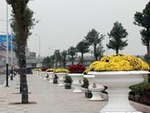 Cận cảnh công viên đẹp nhất Hải Phòng chưa hoàn thành bị cho là sai phạm