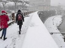 """""""Quái vật từ phía Đông"""" càn quét châu Âu: Đã tìm ra nguyên nhân thời tiết kỳ dị"""