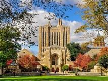 Bạn có biết trường đại học nào là nơi đào tạo ra nhiều tỷ phú nhất trên thế giới?