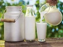 Sữa bò có thực sự là nguyên nhân gây ung thư? Đừng nghe lời đồn, hãy nghe chuyên gia nói