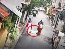 Phẫn nộ cảnh hai thanh niên trộm chó táo tợn còn kéo lê người phụ nữ trung tuổi ngã lăn ra đường