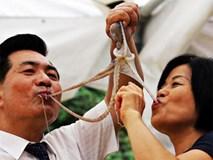 Top 10 món kinh dị trên Thế giới không phải ai cũng đủ dũng cảm để ăn