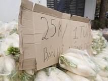 """Hàng trăm người dân Hà Nội háo hức """"giải cứu"""" củ cải trắng cho nông dân Tráng Việt"""