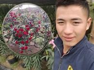 Bị chửi rủa là kẻ cắp cây hoa hồng cổ 10 năm chỉ vì đăng ảnh lên trang cá nhân, chàng trai lên tiếng kêu oan