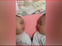 Hai bé sinh tán chuyện sôi nổi cùng nhau