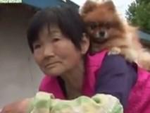 Cụ bà cõng con chó trên lưng hằng ngày và đôi mắt mù của thú cưng khiến bao người cảm động