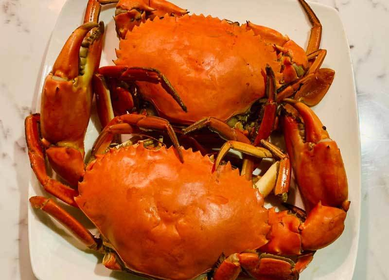 Dân Hà thành lùng mua hải sản 'khuyết tật'-1