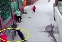 Clip: Cùng nhóm bạn đứng trêu chọc, bé trai bị chó lao qua tường bao tấn công