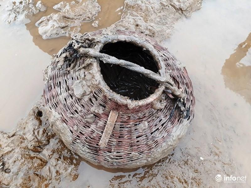 Loại cá kỳ dị nhất hành tinh được nhiều ngư dân săn bắt ở biển Thanh Hóa-5