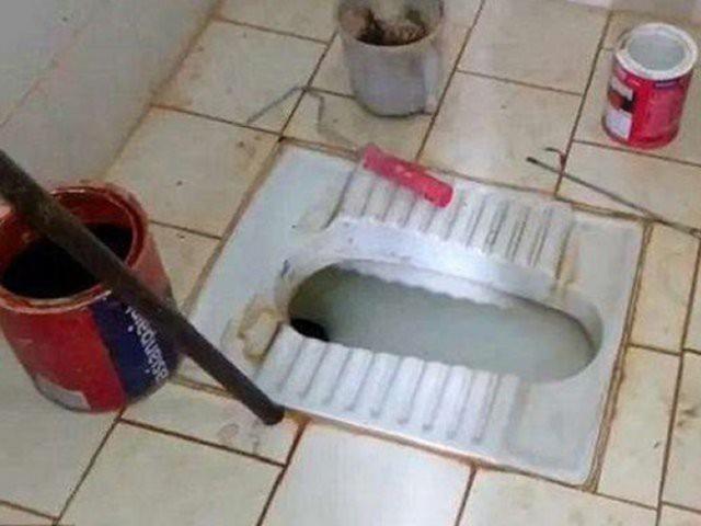 Bồn cầu nhà vệ sinh bị tắc, thợ sửa ống nước phát hiện thứ kinh hoàng này bên trong-1
