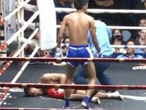 Sốc: Võ sĩ trẻ bị tử vong ở giải đấu võ cổ truyền tại Việt Nam
