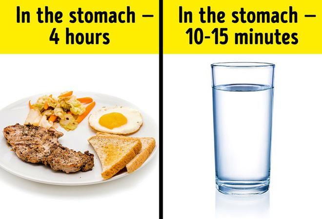 Uống nước trong khi ăn có hại hay không? Câu trả lời khiến nhiều người bất ngờ-2