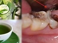 """Ngậm nước lá chanh đun đặc – """"Bài thuốc"""" trị sâu răng, viêm lợi, hôi miệng hiệu quả đến 90%"""