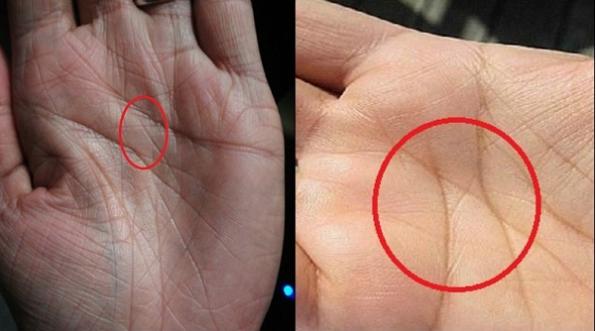 Nhìn vào lòng bàn tay mình và xem đi, nếu sở hữu đường chỉ tay như thế này, bạn đúng là của hiếm của thế giới, tài giỏi thông minh hơn người-2