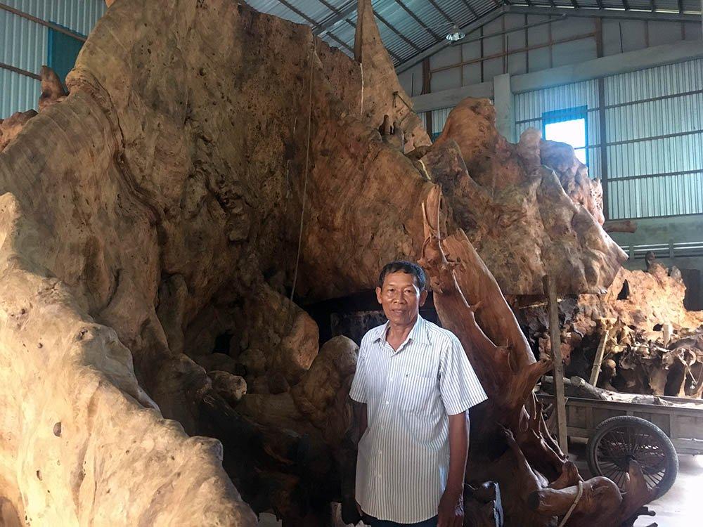 Miễn cưỡng mua gốc cây 35 triệu, nào ngờ được báu vật 35 tỷ-1