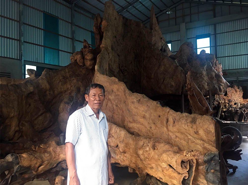 Miễn cưỡng mua gốc cây 35 triệu, nào ngờ được báu vật 35 tỷ-9