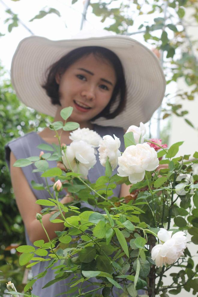 Ngắm khu vườn hoa hồng đẹp ngất ngây đã giúp cô gái thoát khỏi bệnh trầm cảm ở Hà Nội-16