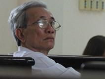 Phó thủ tướng có ý kiến về vụ bị cáo 77 tuổi dâm ô với trẻ em