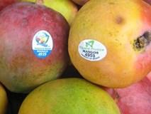 Cầm trái cây nhập khẩu là phải xem ngay những con số này rồi hãy quyết định mua