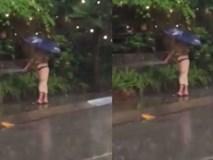 Người đàn ông che ô cặm cụi tưới nước giữa trời mưa rào