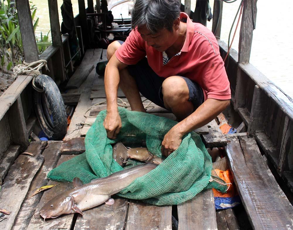 Quái ngư miền Tây, liều mình săn cá độc đau thấu trời xanh-5