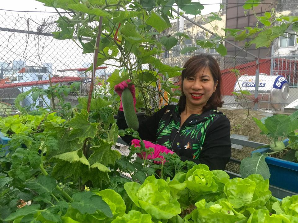 Ngưỡng mộ bà mẹ Hà thành trồng rau, nuôi chim gà trên sân thượng-1