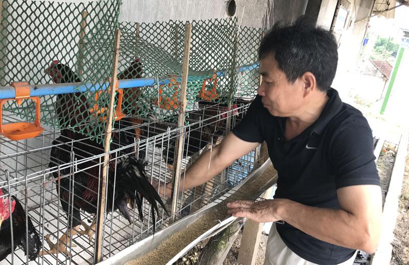 Độc chiêu hiếm có Việt Nam, lão nông thu lãi 1,5 tỷ/tháng-3
