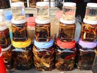 Săn 'thần dược xuân tình' ở chợ côn trùng lớn nhất miền Tây