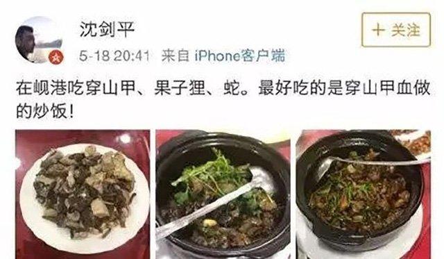 Nhậu động vật quý hiếm Việt Nam, Phó chủ tịch tập đoàn Trung Quốc bị sa thải-1