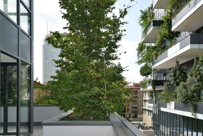 Lạ kì tòa chung cư như rừng xanh dựng đứng giữa lòng thành phố-3