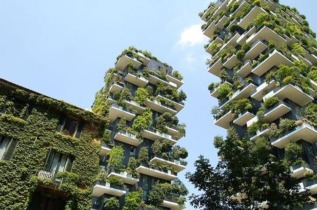 Lạ kì tòa chung cư như rừng xanh dựng đứng giữa lòng thành phố-7
