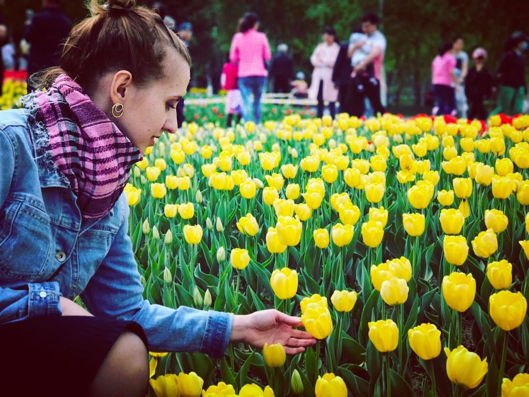 Không cần tới Hà Lan, ngay láng giềng Việt Nam cũng có thiên đường hoa tulip đẹp chất ngất!-12