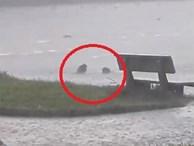 Cô gái 'tắm tiên' giữa trời mưa khiến người xem choáng váng và sự thật phía sau