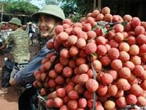 Thực hư 10.000 đồng mua 3kg vải thiều Bắc Giang