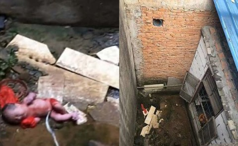 Bé sơ sinh sống sót thần kỳ sau khi nghi bị ném qua bức tường cao gần 2m-1