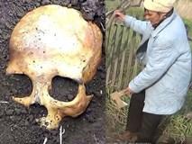 Đào được hộp sọ khi đang làm vườn, chú nông dân Nga sợ mất mật khi vợ bảo