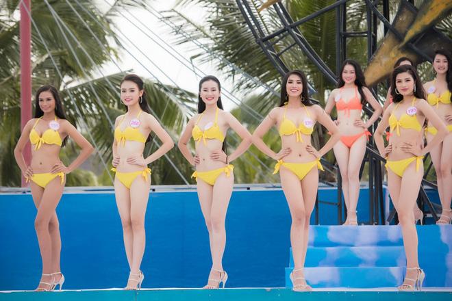 """Cha đẻ"""" cuộc thi Hoa hậu Việt Nam: Bỏ bikini thì còn gì là thi Hoa hậu!-2"""