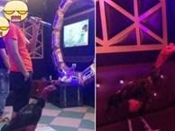 Tâm sự cười chảy nước mắt của cô vợ đòi ly dị vì chồng mê gà chọi: Đang ân ái nhảy bổ xuống kiểm tra chuồng, đem cả gà đi hát karaoke