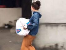 Chân trần bê bao thóc mấy chục cân đi phăm phăm trong ngày mùa, cô gái trẻ khiến cộng đồng mạng thi nhau xin info