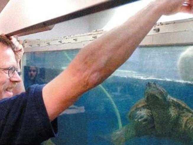 Cho rùa ăn tái cún con trước lớp, thầy giáo đối mặt án tù-1