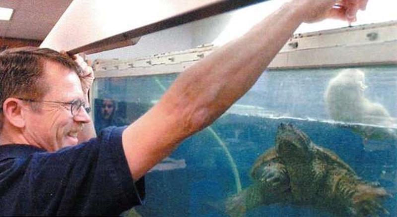 Cho rùa ăn tái cún con trước lớp, thầy giáo đối mặt án tù-2